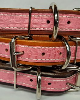 Leather Dog Collar 1 1/4 inch With Exotic Gator Print Accent Pink