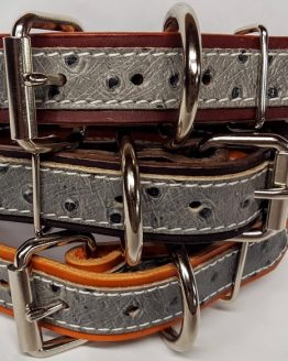 Leather Dog Collar 1 1/4 inch With Exotic Ostrich Print Accent - Grey