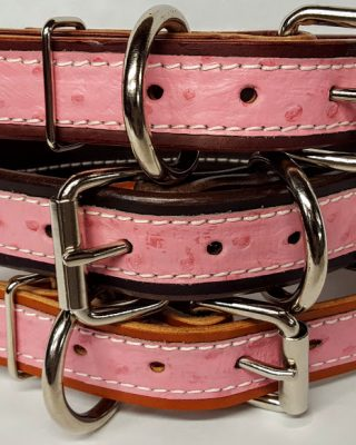 Leather Dog Collar 1 1/4 inch With Exotic Ostrich Print Accent - Pink