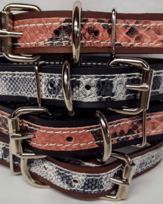 Leather Dog Collar 1 1/4 inch With Exotic Snake Print Accent - Grey