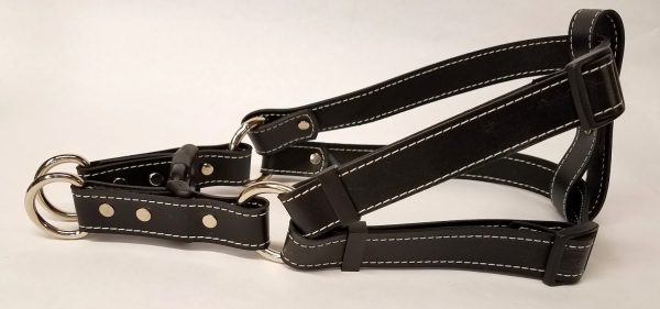 Leather Dog Harness 1 Inch Wide-Black