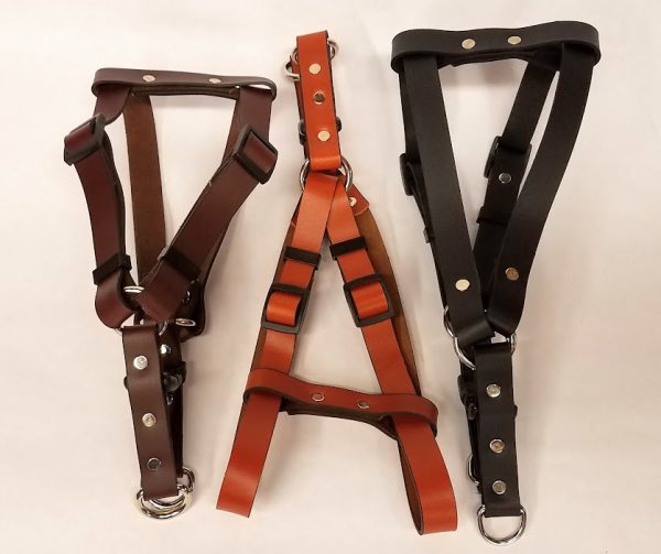Leather Dog Harness Plain 0.75 Inch Wide-DHP5002-2